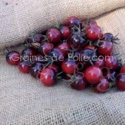 Tomate cerise INDIGO BLUE BERRIES - Graines seeds