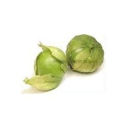 «GRANDE RIO VERDE» Tomatillo