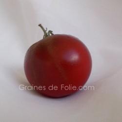 Tomate PRINCE NOIR