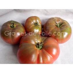 Tomate NOIRE de TULA