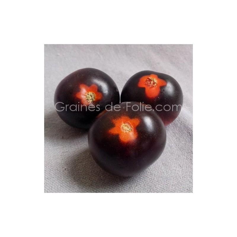 graines de tomate violette indigo rose sur. Black Bedroom Furniture Sets. Home Design Ideas