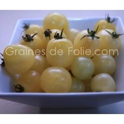 Tomate WHITE CHERRY ou CERISE BLANCHE