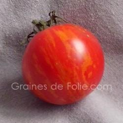 TomateTIGERELLA