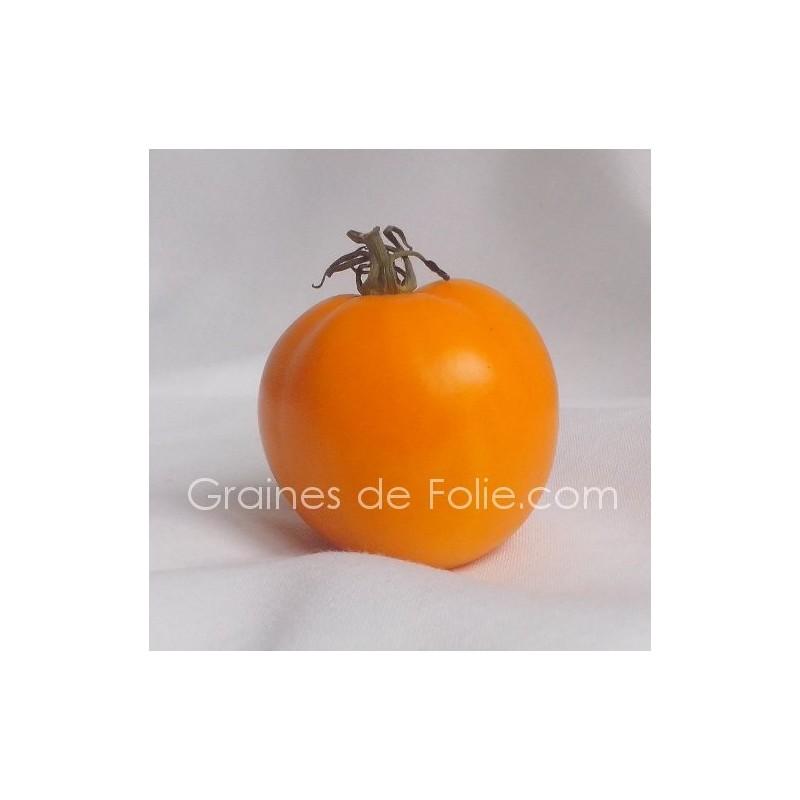 vente de graines de tomate orange valencia sur. Black Bedroom Furniture Sets. Home Design Ideas
