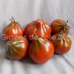 TomateBLACK TRUFFLE