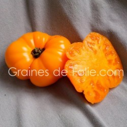 Tomate BRANDYWINEJAUNE
