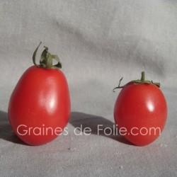 Tomate ROSE PERLEE