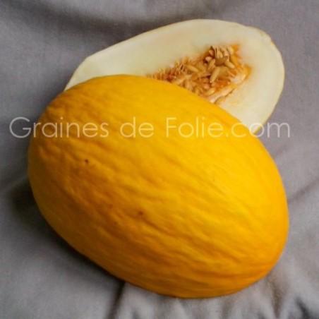 MelonJAUNE CANARI