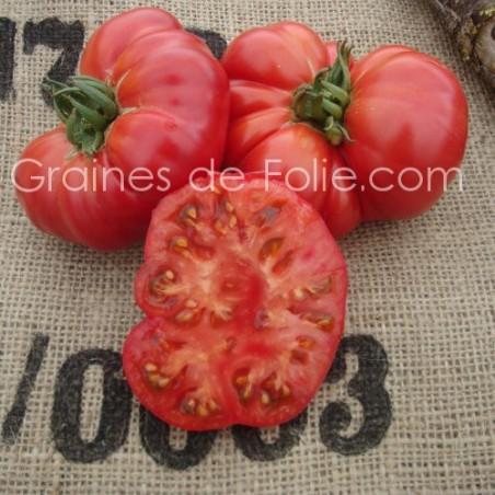 Graines de TomateOMAR'S LEBANESE