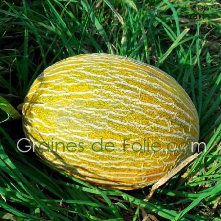 MelonESPAGNOL A CHAIR ROSE
