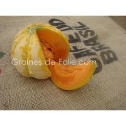 Melonde BELLEGARDE - BIO *