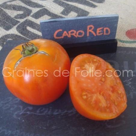Tomate CARO RED