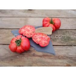 TomateOMARS LEBANESE