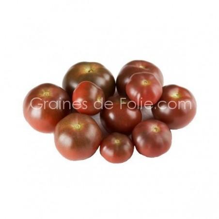 Tomate cerise chocolat BIO BROWN BERRY graines semences Certifiées Agriculture Biologique