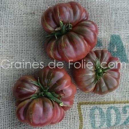 Tomate PURPLE CALABASH - graines semence anciennes