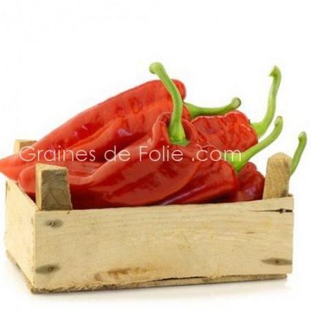 PimentMARCONI ROUGE variété italienne ancienne graines semences