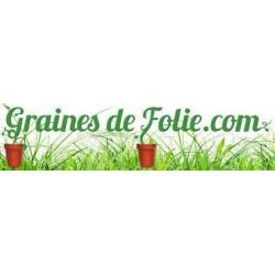 Pâtisson VERT et BLANC BIO graines