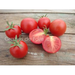 Tomate MATINA - BIO * - semences anciennes graines - certifiée agriculture biologique