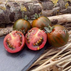 Tomate cerise BLACK ZEBRA CHERRY graines semences anciennes
