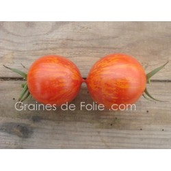 Tomate RED ZEBRA - semences graines tomate anciennes tomato seeds