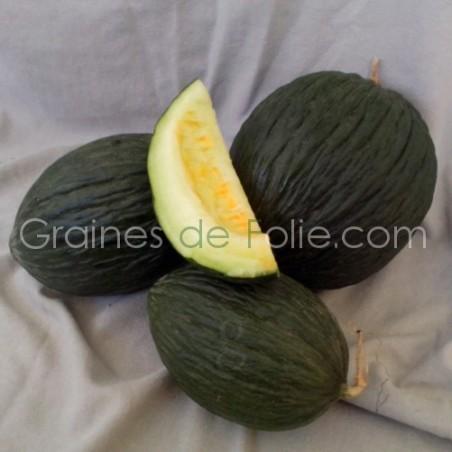 Graines de MelonVERT OLIVE d' HIVER
