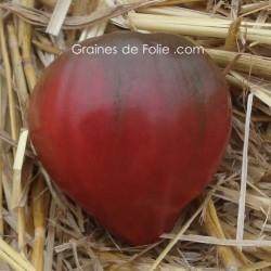 Tomate BRAD'S BLACK HEART graines semences coeur de boeuf noir