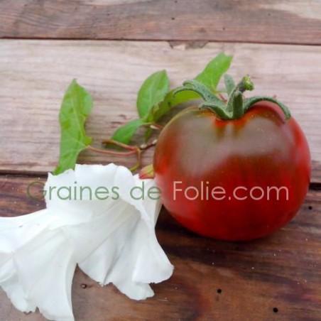 Tomate noire NYAGOUS graines semences