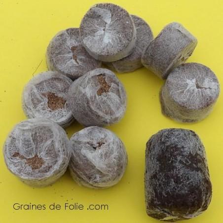 Pastilles Coco 30 mm déshydratées pour semis ou boutures