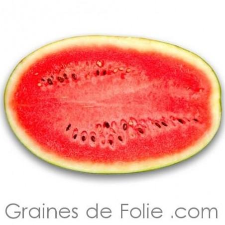 Pastèque CHARLESTON GRAY semences graines watermelon seeds