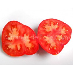 Bio Tomate MARMANDE