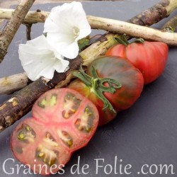 Bio Tomate BLACK SEA MAN graines semences tomato seeds