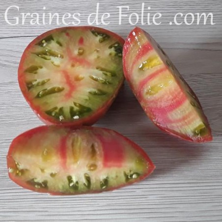 Bio Tomate CAPTAIN LUCKY graines semences anciennes tomato seeds organics