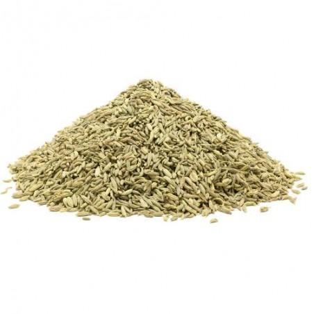 ANIS Pimpinella anisum graines semences certifiées bio AB
