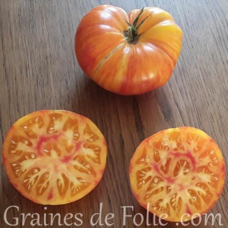Bio Tomate COPIA graines semences anciennes certifiées AB