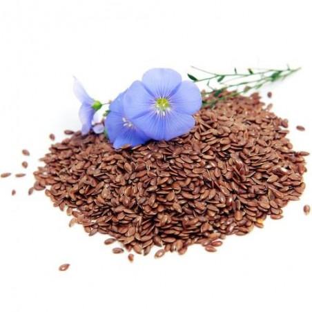 LIN BLEU engrais verts linum usitatissimum semences bio AB
