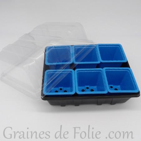 Mini serre avec 6 godets pour semis couleur bleu clair
