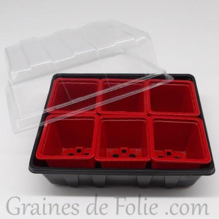 Mini serre avec 6 godets pour semis couleur rouge