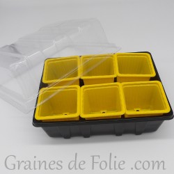 Mini serre avec 6 godets pour semis couleur jaune