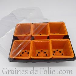 Mini serre avec 6 godets pour semis couleur orange