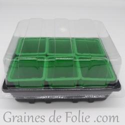 Mini serre avec 6 godets pour semis couleur vert clair