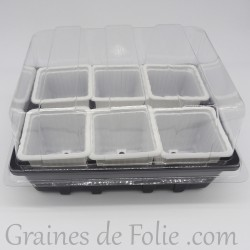 Mini serre avec 6 godets pour semis couleur blanc