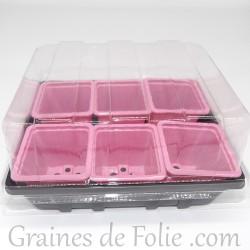 Mini serre avec 6 godets pour semis couleur rose