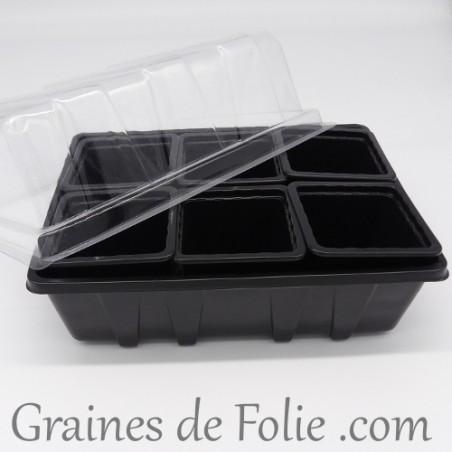 Mini serre avec 6 godets pour semis couleur noir