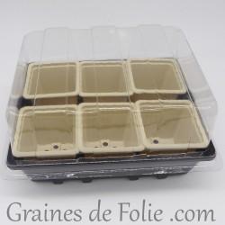 Mini serre avec 6 godets pour semis couleur beige