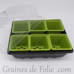 Mini serre avec 6 godets pour semis couleur vert bambou