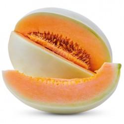 Melon miel Honey dew à chair Orange graines semences à pollinisation ouverte
